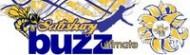 Buzz Disc Golf League logo