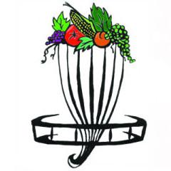Discin4Life logo