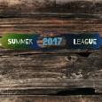 Summer Novice League logo