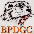 Bevier Park Disc Golf Leagues logo