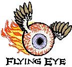 Flying Eye Open - Pro logo