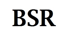 BSR Fall Finisher logo