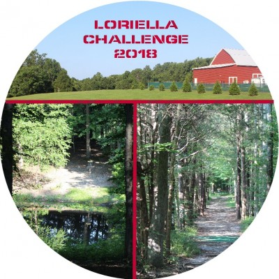 ODDS #1 - Loriella Challenge AM : Sponsored by Dynamic Discs - Only MA1 & MA40 logo