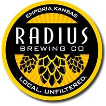 Radius Open sponsored by Dynamic Discs logo