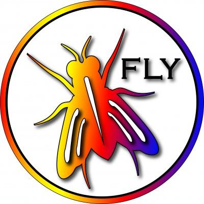 Maurertown FLY I81DGS #8 logo