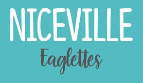 5th Annual Niceville Eaglettes Doubles Disc Golf Fundraiser logo