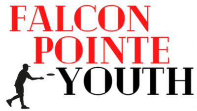 Falcon Pointe Youth League Presents - The 1st Annual Falcon Ponte Youth League Championship logo