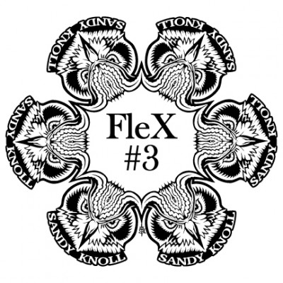 Sandy Knoll FleX #3 PDGA C Tier logo