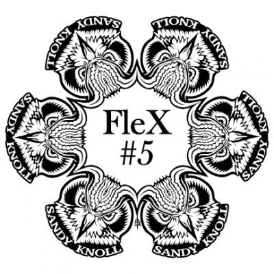 Sandy Knoll FleX #5 PDGA C Tier logo