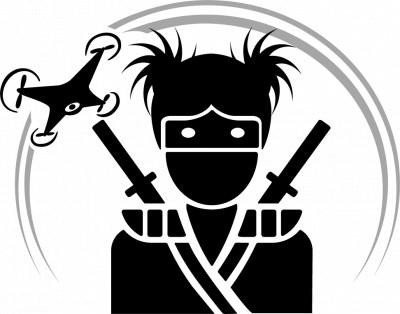 Furies Stabilizing Fundraiser logo