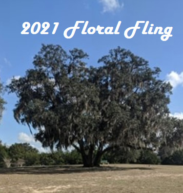 2021 Floral Fling Sponsored by Dynamic Discs logo