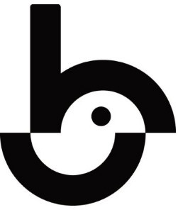 Birdie Presents: The Brandywindjammer - Pro/MA1 logo