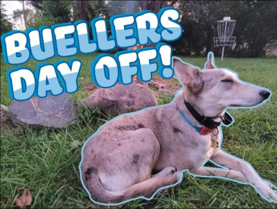 Buellers Day Off logo